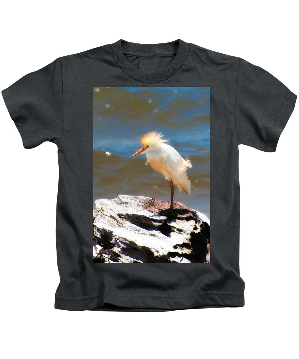 Bird Kids T-Shirt featuring the photograph Cattle Egret In Breeding Plumage by Rich Leighton