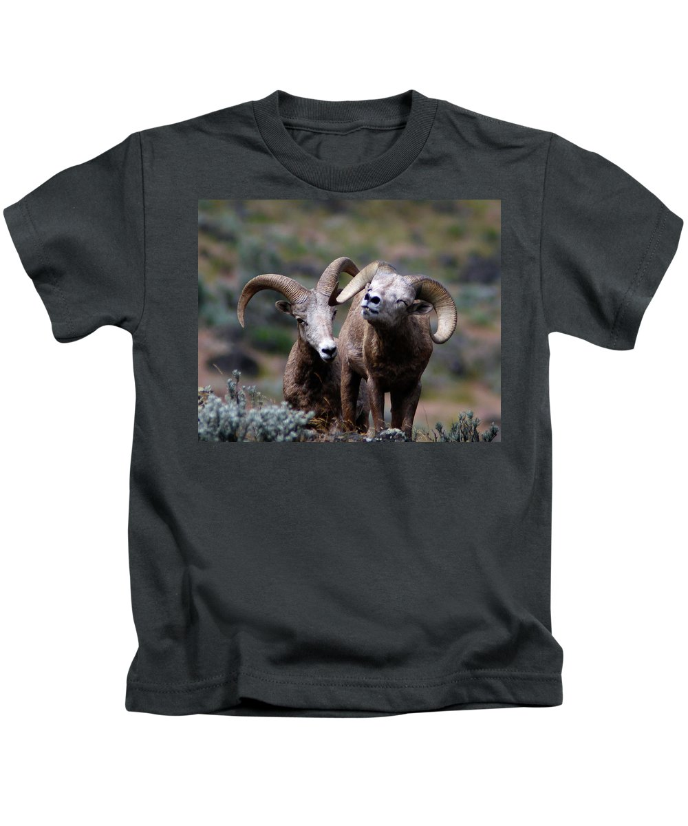 Bighorn Sheep Kids T-Shirt featuring the photograph Smile by Steve McKinzie