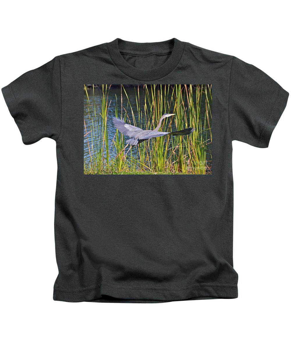Heron Kids T-Shirt featuring the photograph Taking Off by Carol Bradley