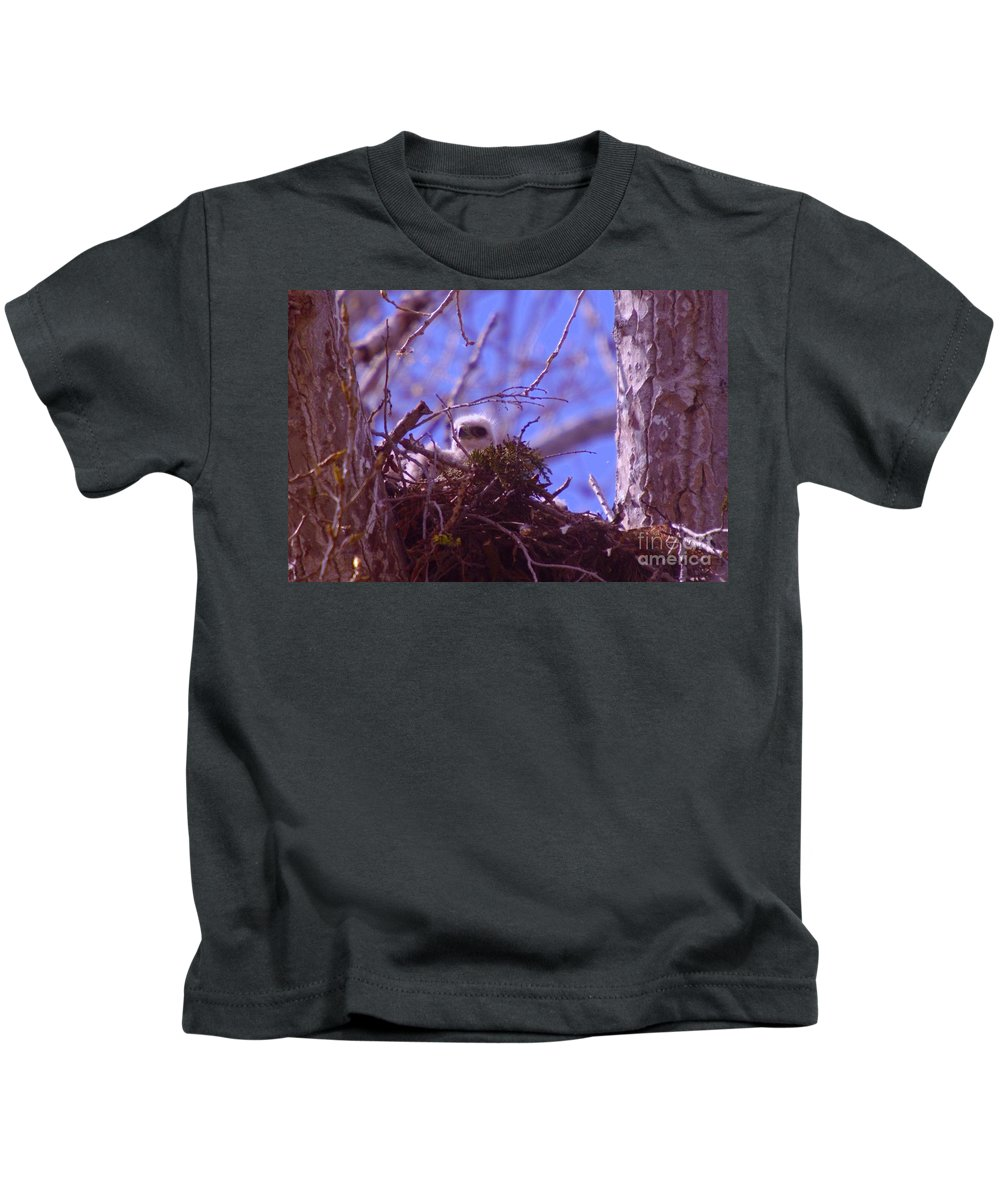 Hawks Kids T-Shirt featuring the photograph A Baby Red Tail Gazing From Its Nest by Jeff Swan