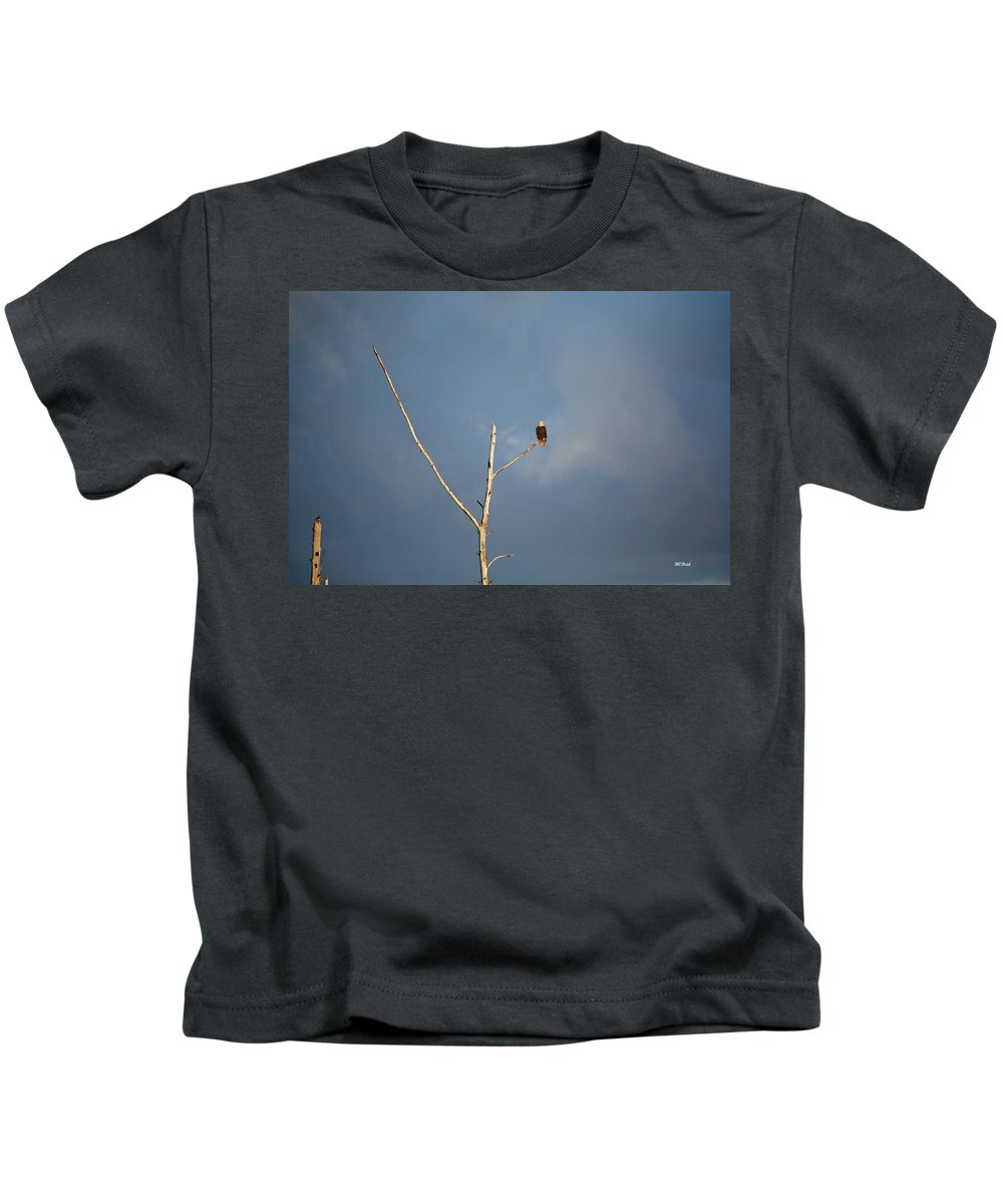 American Kids T-Shirt featuring the photograph American Bald Eagle - Overlooking Naples Florida Gordon River by Ronald Reid