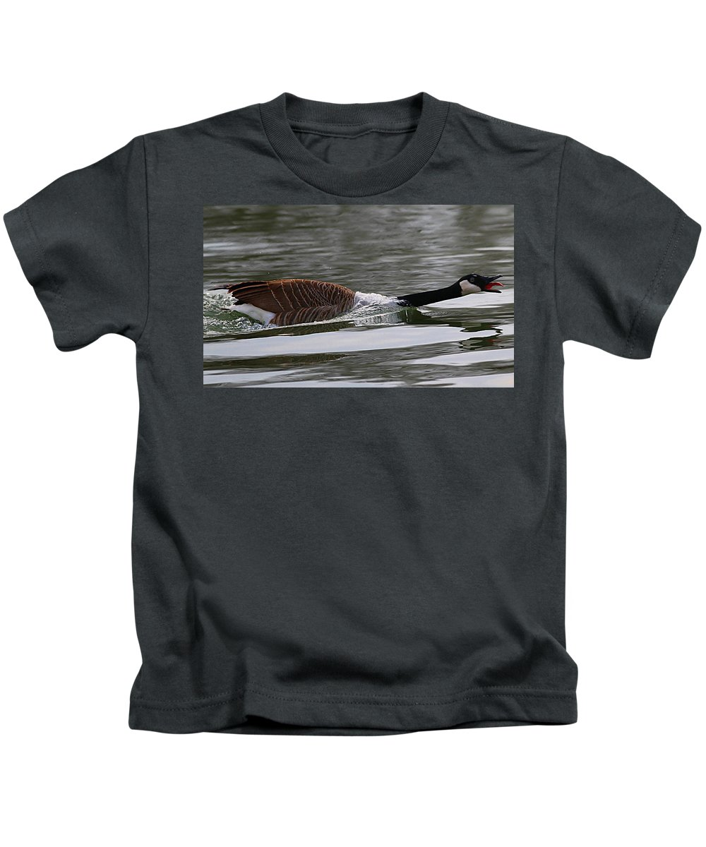 Canadian Goose Kids T-Shirt featuring the photograph Attack Of The Canadian Geese by Elizabeth Winter
