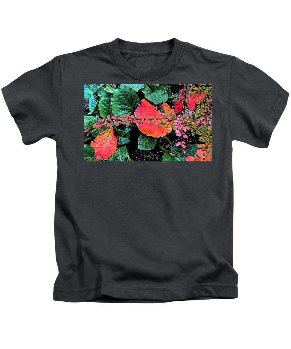 Flowers Kids T-Shirt featuring the photograph Autumn Composition One by Ian MacDonald