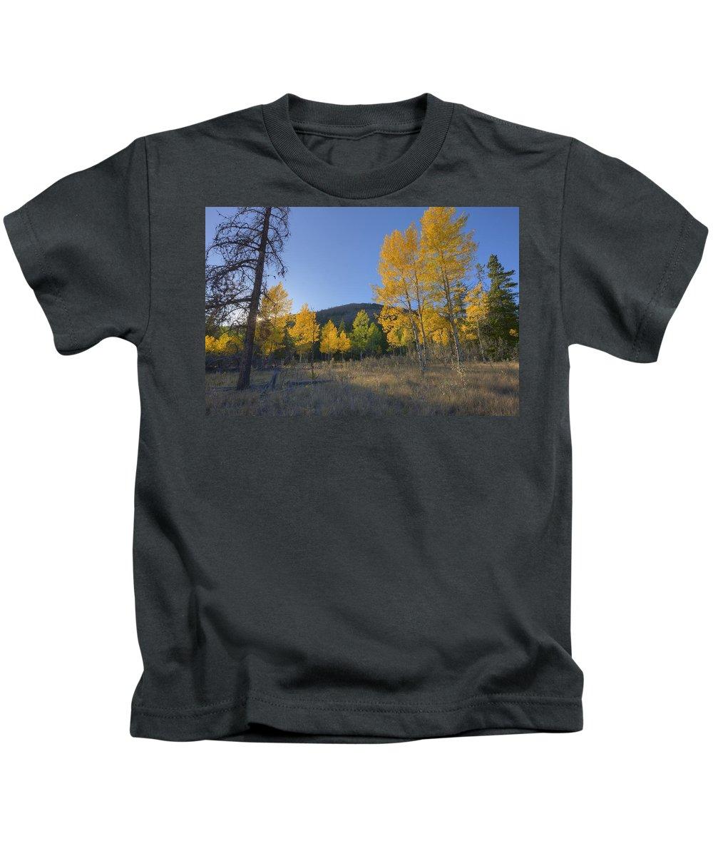 Autumn Kids T-Shirt featuring the photograph Autumn Sunset In Forest Of Golden Aspen by Dan Jurak