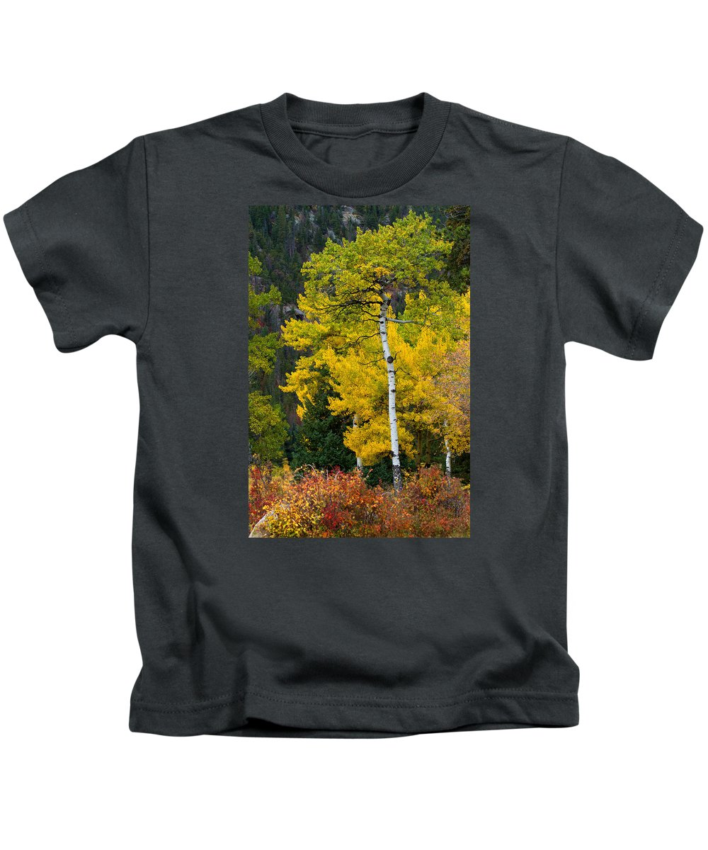 Autumn Colors Kids T-Shirt featuring the photograph Autumn Wonder by Jim Garrison