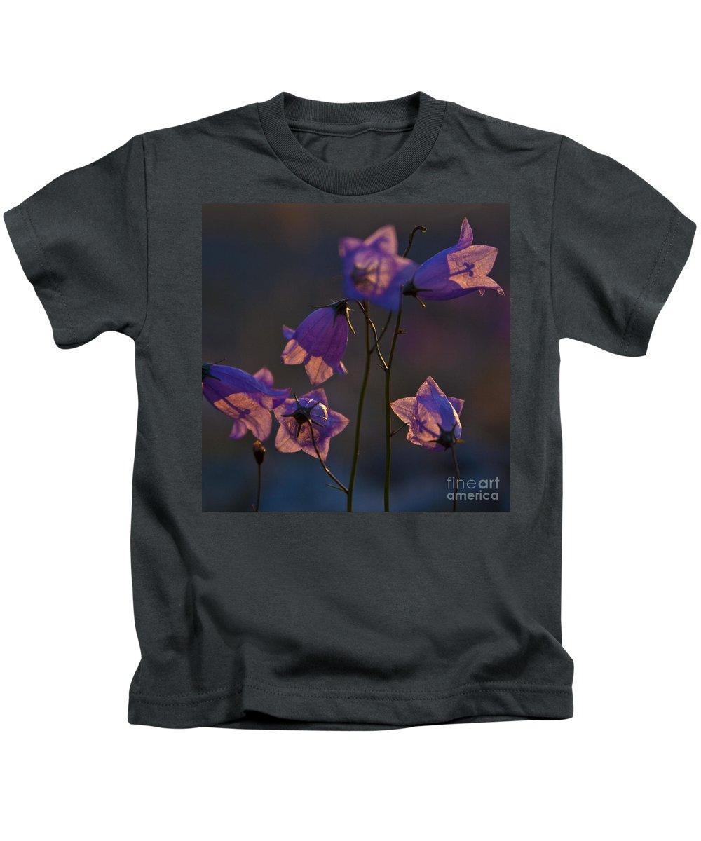 Heiko Kids T-Shirt featuring the photograph Bellflower by Heiko Koehrer-Wagner