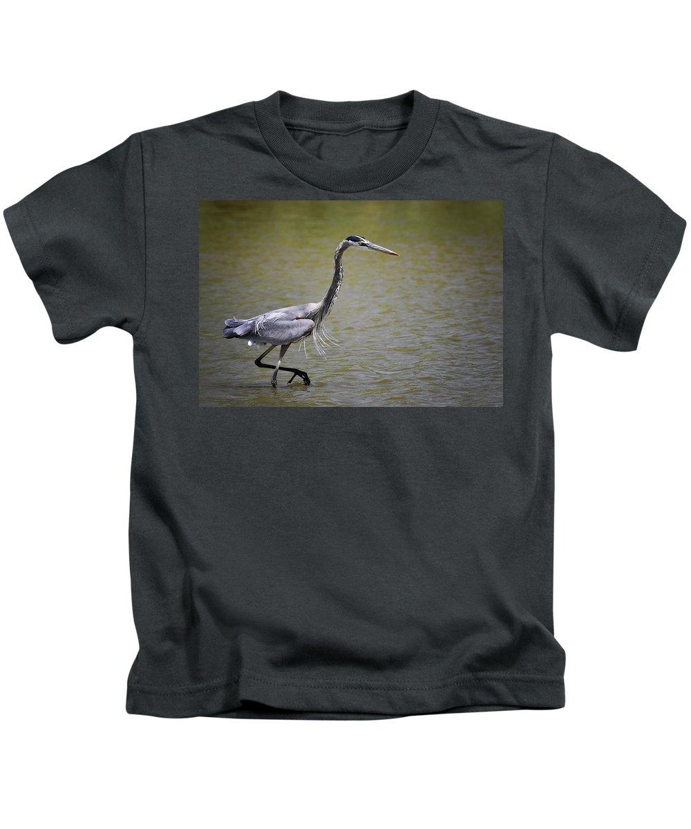 Great Blue Heron Kids T-Shirt featuring the photograph Blue Heron On The Hunt by Saija Lehtonen
