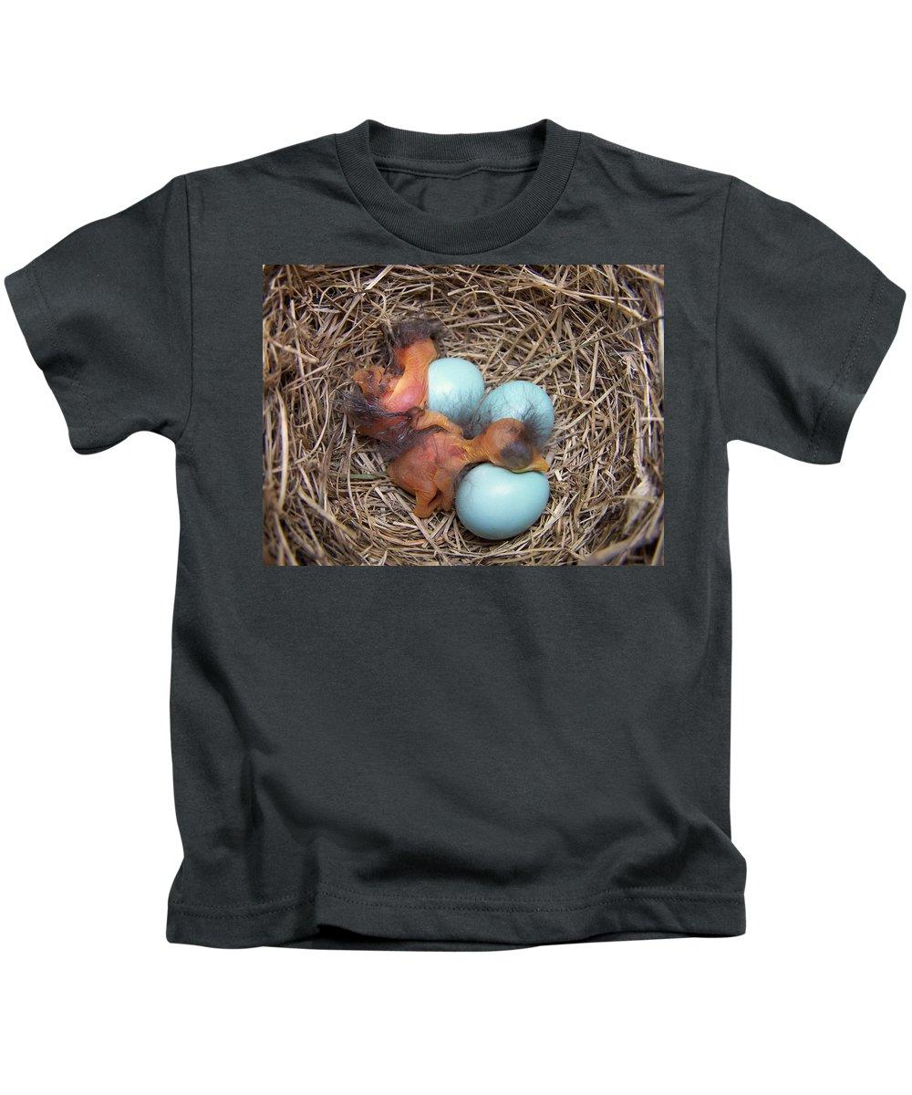 Bluebird Kids T-Shirt featuring the photograph Bluebird Hatch by Bill Pevlor