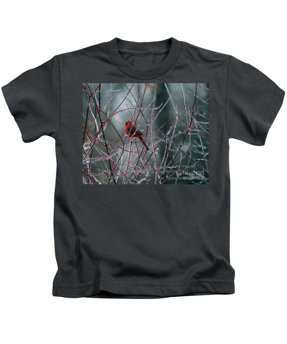 Bird Kids T-Shirt featuring the photograph Cardinal On Ice by Living Color Photography Lorraine Lynch