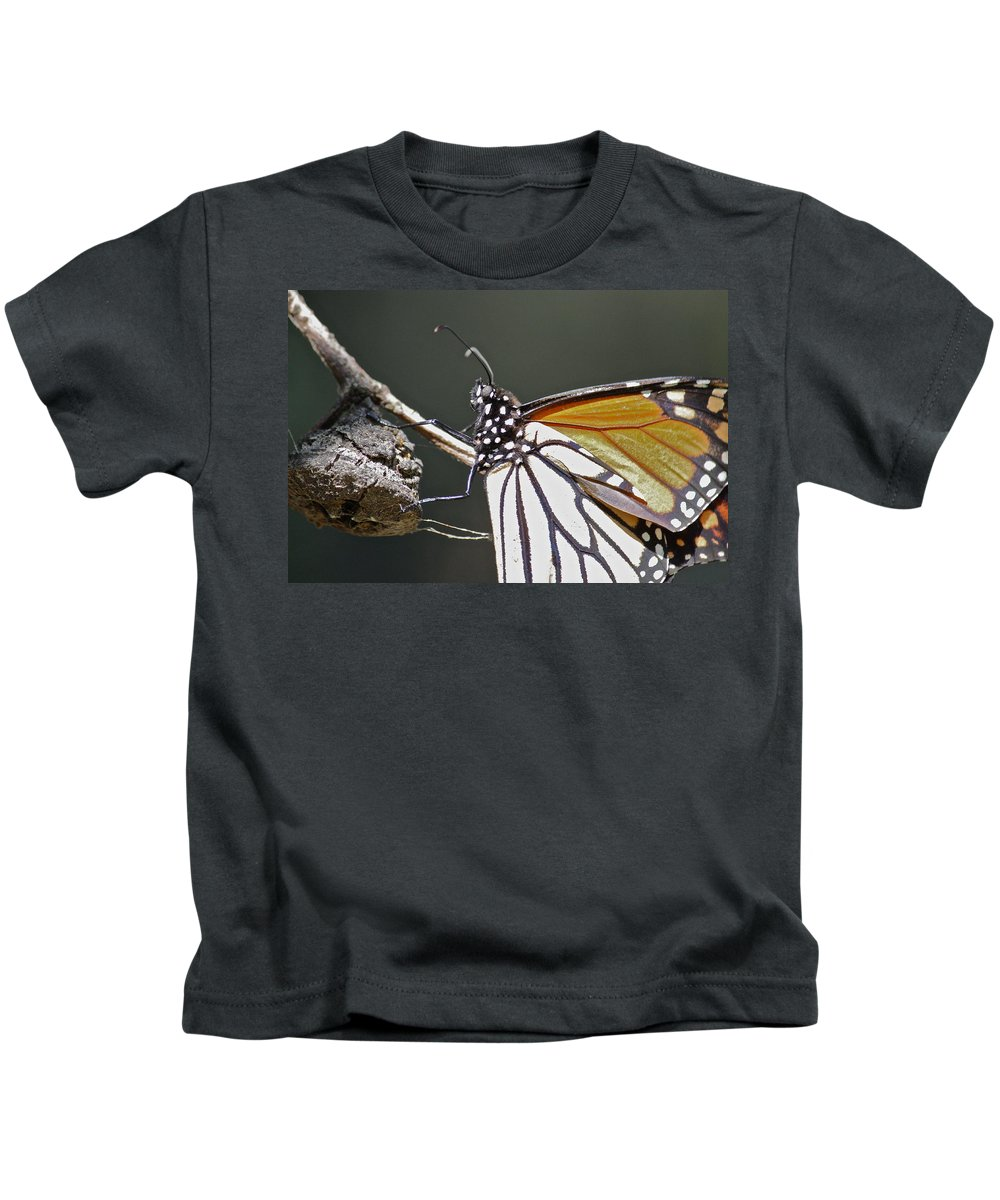 Butterfly Kids T-Shirt featuring the photograph Close Up by Diana Hatcher
