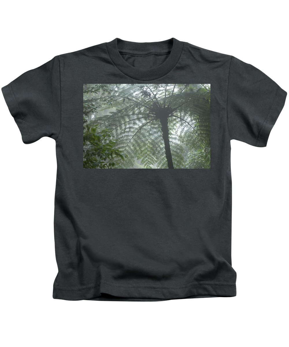 Attraction Kids T-Shirt featuring the photograph Cloud Forest Ceiling, Costa Rica by Peter Van Rhijn