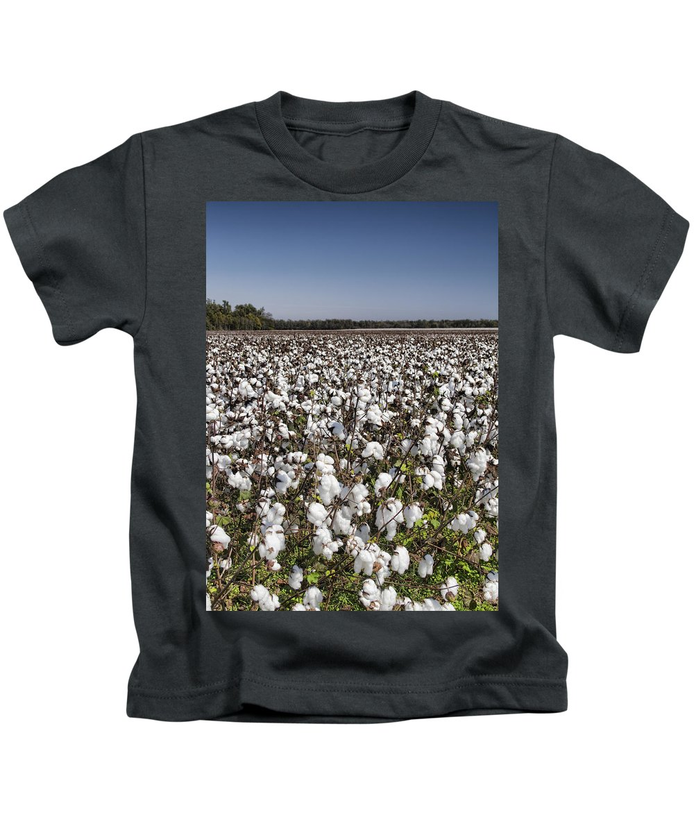 Cotton Kids T-Shirt featuring the photograph Cotton In Limestone County by Kathy Clark
