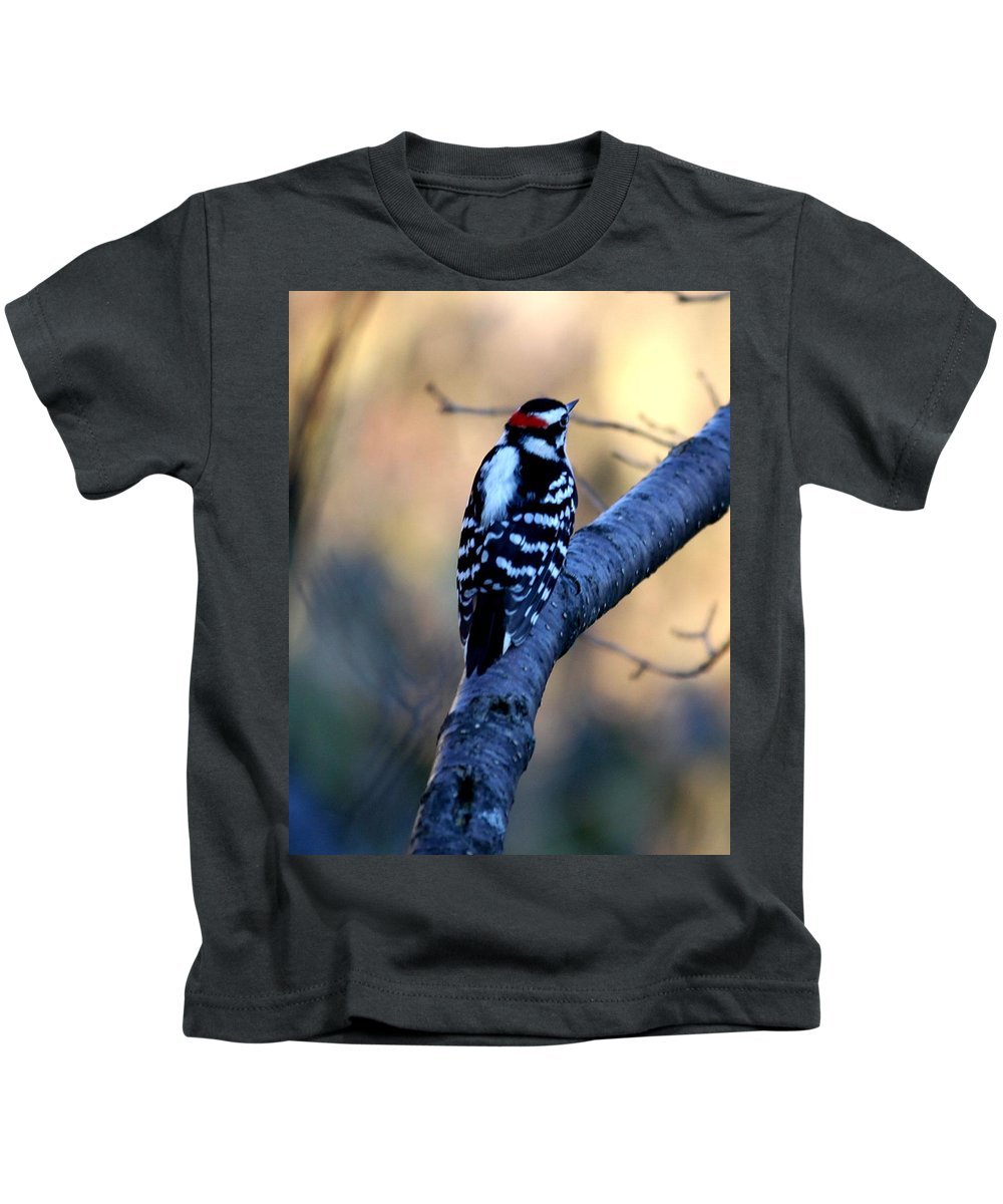 Woodpecker Kids T-Shirt featuring the photograph Downy Woodpecker by Elizabeth Winter