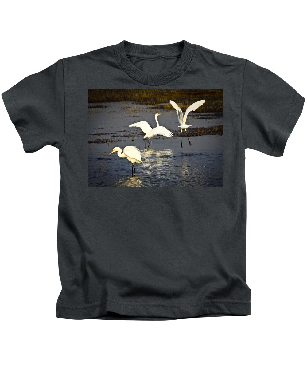 Birds Kids T-Shirt featuring the photograph Egrets by Steve McKinzie