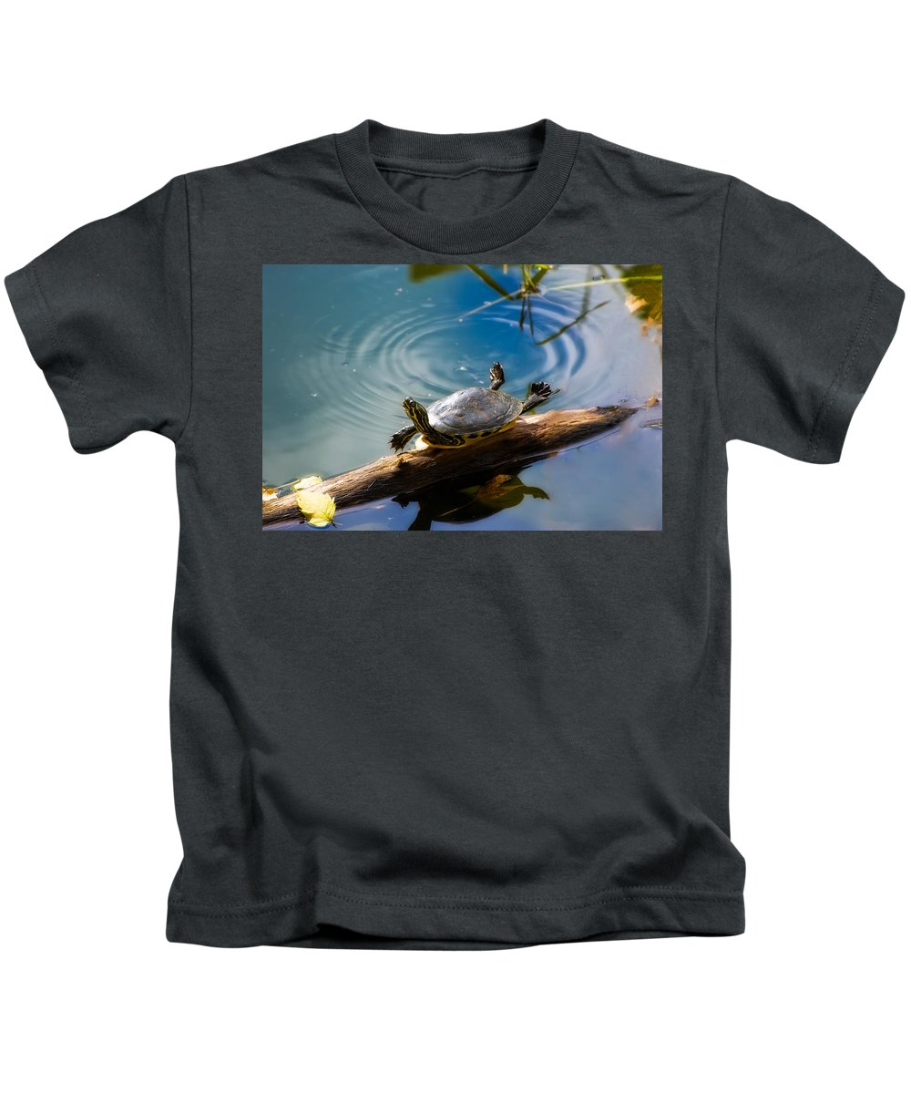 America Kids T-Shirt featuring the photograph Funny Turtle Catching Some Rays by Rich Leighton