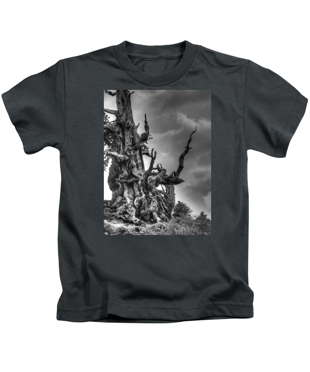 Pine Kids T-Shirt featuring the photograph Gnarls by Joe Schofield