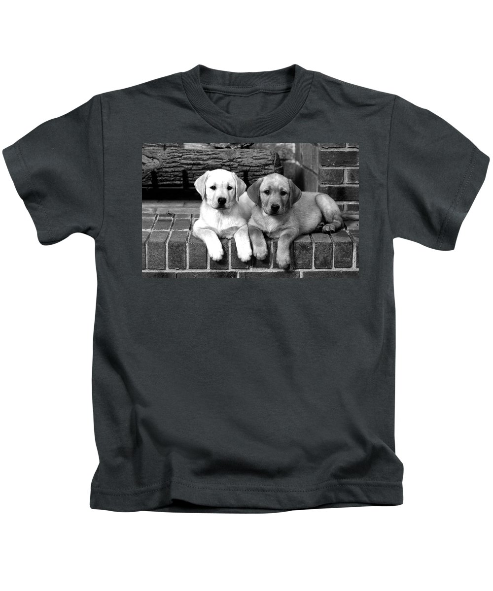 Dog Kids T-Shirt featuring the photograph Golden Retriever Pups by Sumit Mehndiratta