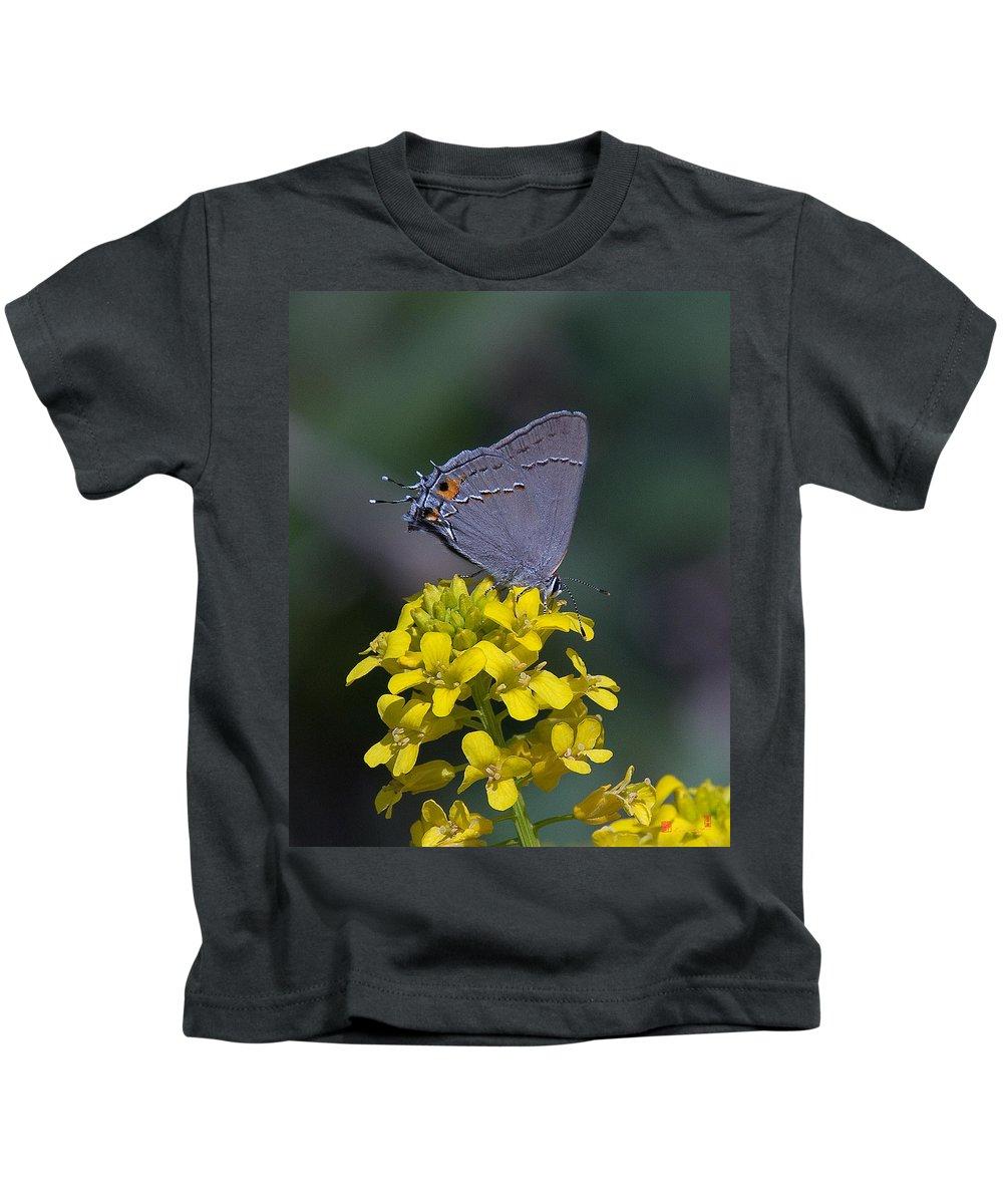 Nature Kids T-Shirt featuring the photograph Gray Hairstreak Butterfly Din044 by Gerry Gantt