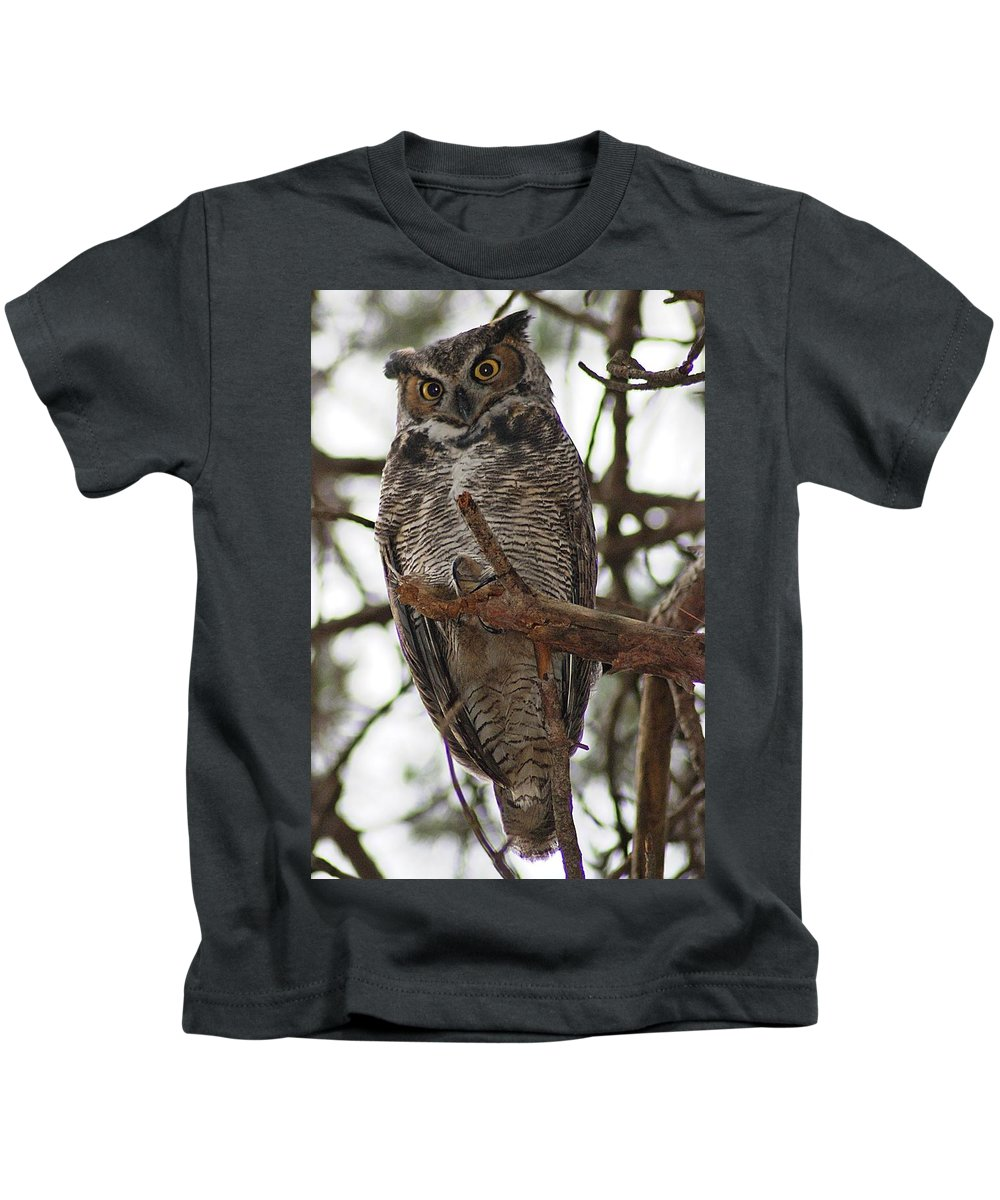 Great Horned Kids T-Shirt featuring the photograph Great Horned Owl IIi by Joe Faherty