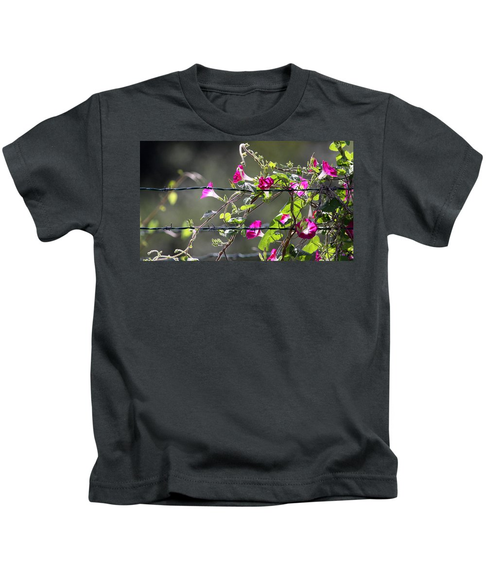 Morning Glory Kids T-Shirt featuring the photograph Morning Pink by Travis Truelove