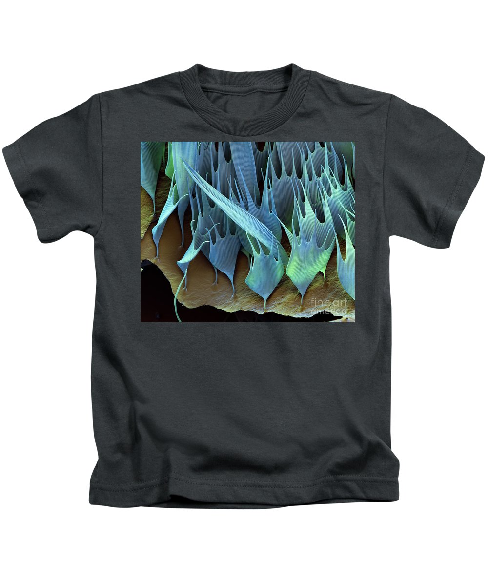 Sem Kids T-Shirt featuring the photograph Moth Wing Scales Sem by Eye of Science