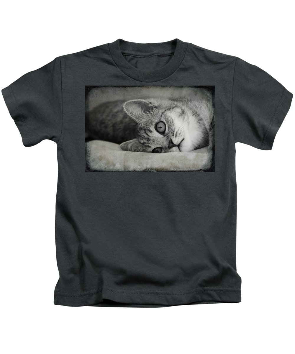 Cat Kids T-Shirt featuring the photograph Muffin by Claudia Moeckel