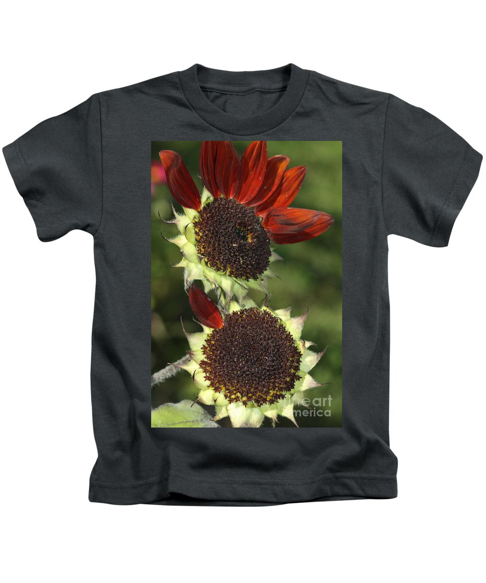 Sunflower Kids T-Shirt featuring the photograph One Petal by Deborah Benoit