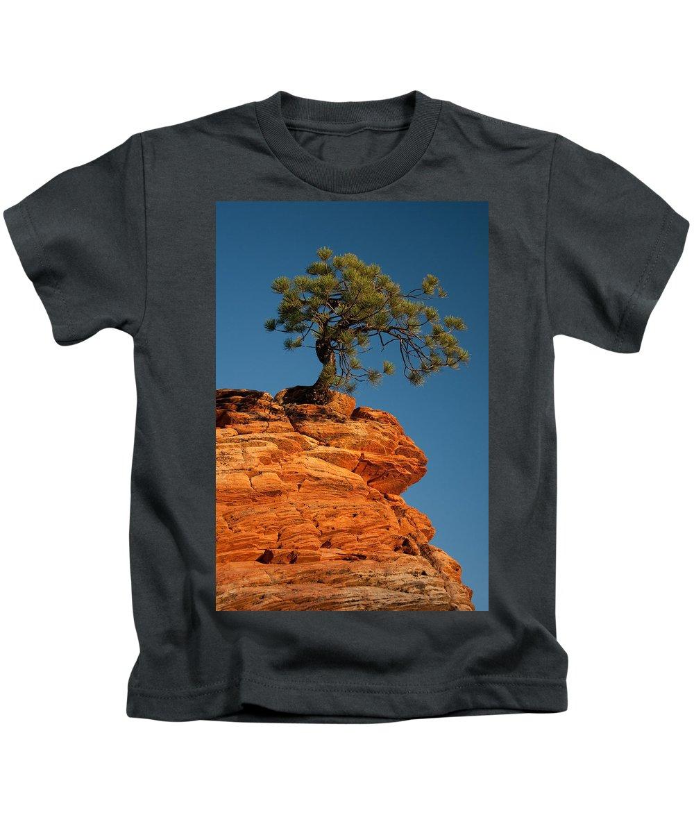 Pine Kids T-Shirt featuring the photograph Pine On Rock by Ralf Kaiser
