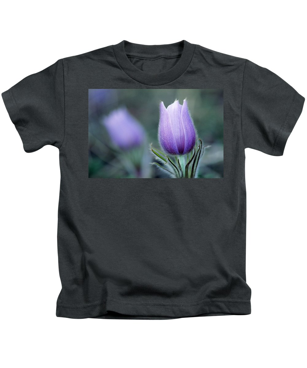 Close Shot Kids T-Shirt featuring the photograph Prairie Crocus Anemone Patens by Mike Grandmailson