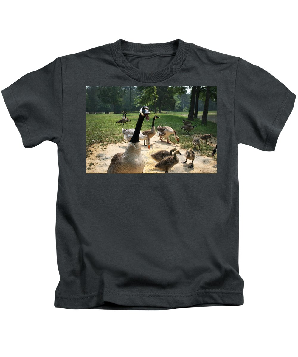 Canadian Kids T-Shirt featuring the photograph Protective Mad Mama Canadian Goose by Kathy Clark