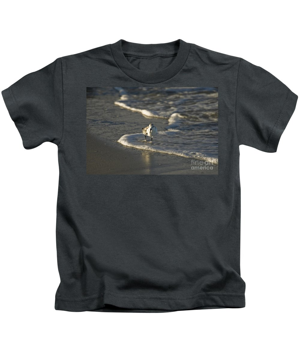 Seabird Kids T-Shirt featuring the photograph Sandpiper On Beach by Tim Mulina