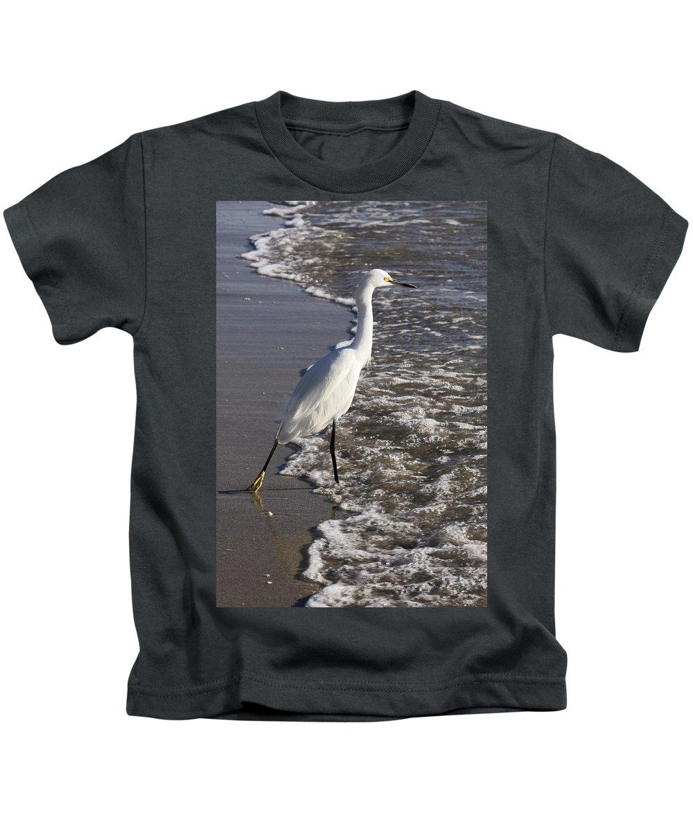 Snowy Egret Walking Into Surf Kids T-Shirt featuring the photograph Snowy Egret Walking by Sally Weigand