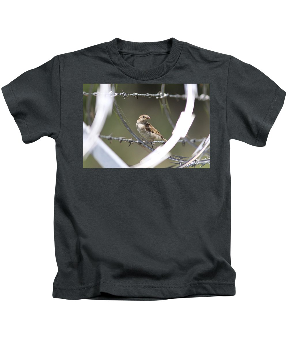 Sparrow Kids T-Shirt featuring the photograph Sparrow - Protected By Razor Wire by Travis Truelove
