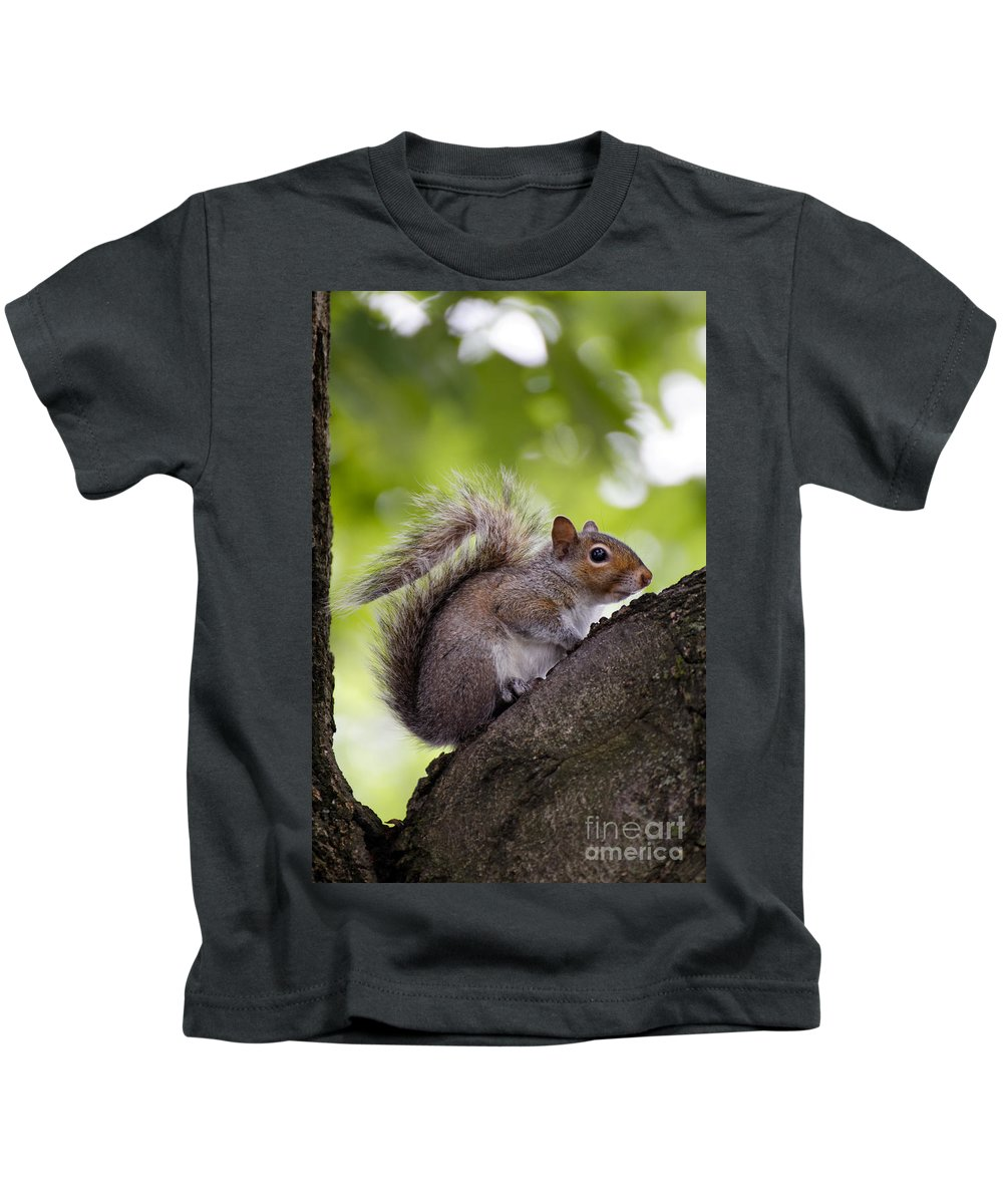 Alert Kids T-Shirt featuring the photograph Squirrel Before Green Leaves by Jannis Werner