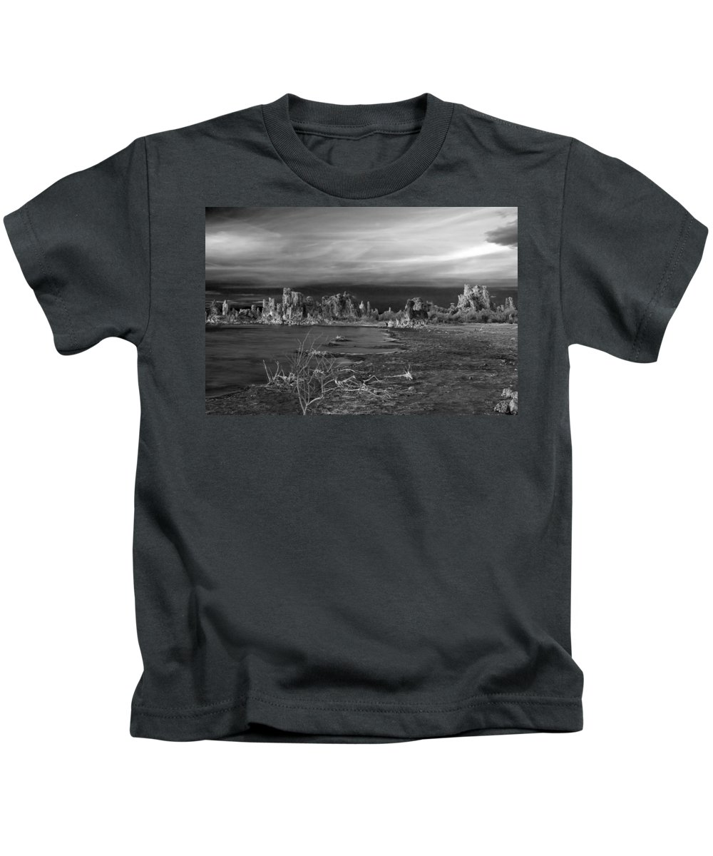 Stark Beauty Kids T-Shirt featuring the photograph Stark Beauty by Wes and Dotty Weber