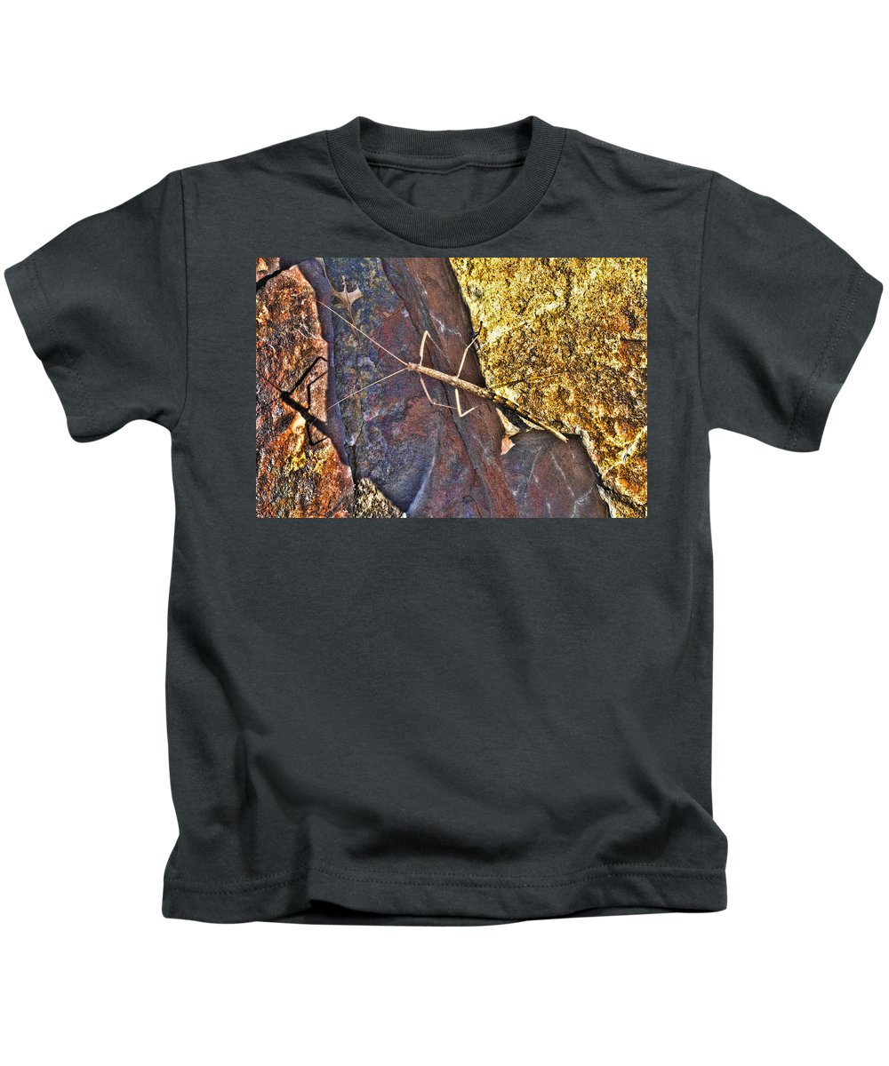 Stick Insect Kids T-Shirt featuring the photograph Stick Insect by Douglas Barnard