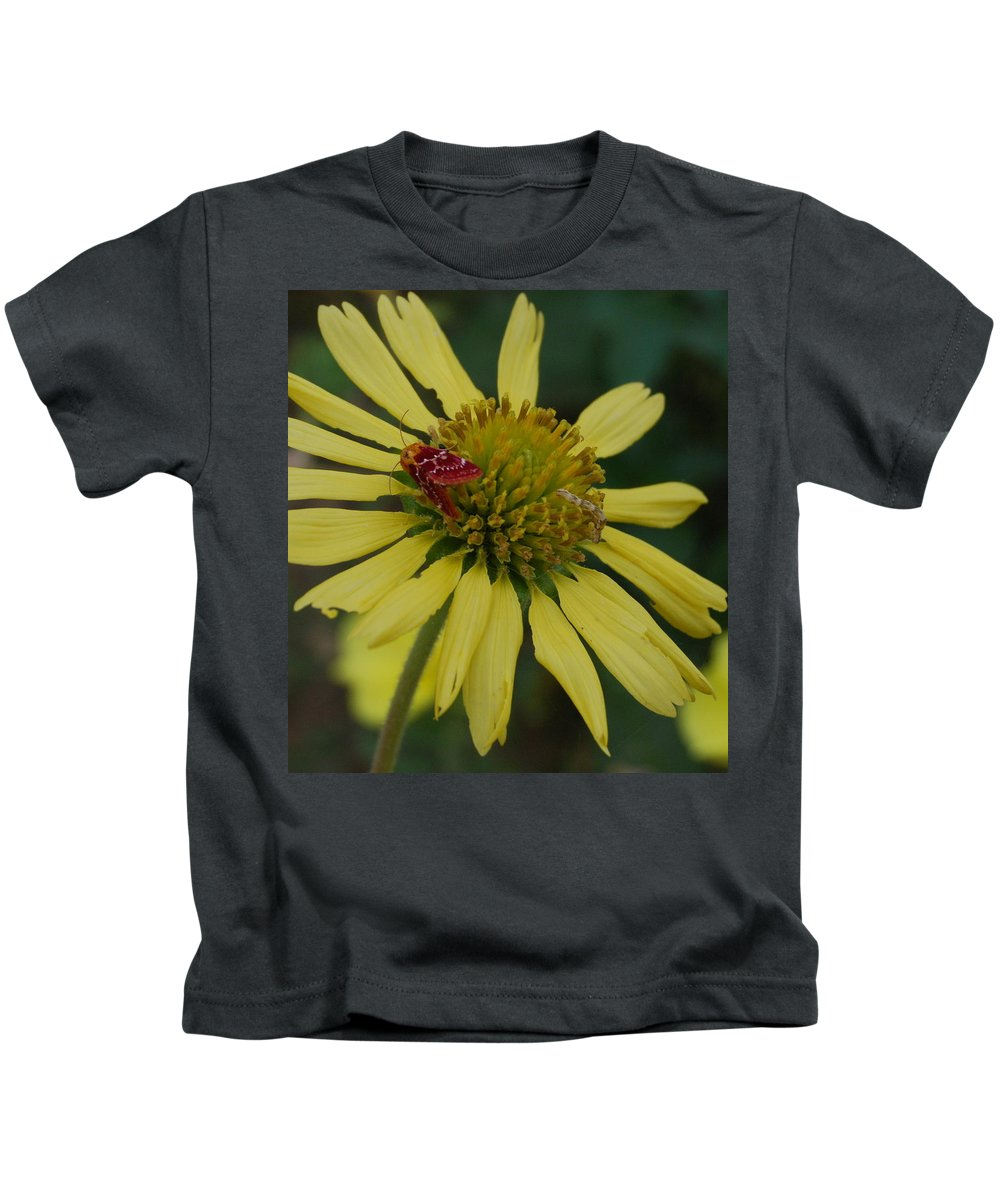 Flower Kids T-Shirt featuring the photograph Strawberry Moth on a Yellow Flower by Beth Gates-Sully