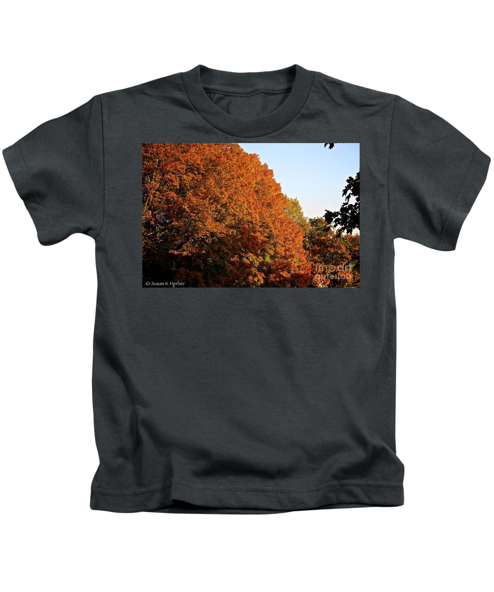 Outdoors Kids T-Shirt featuring the photograph Sugar Maple by Susan Herber