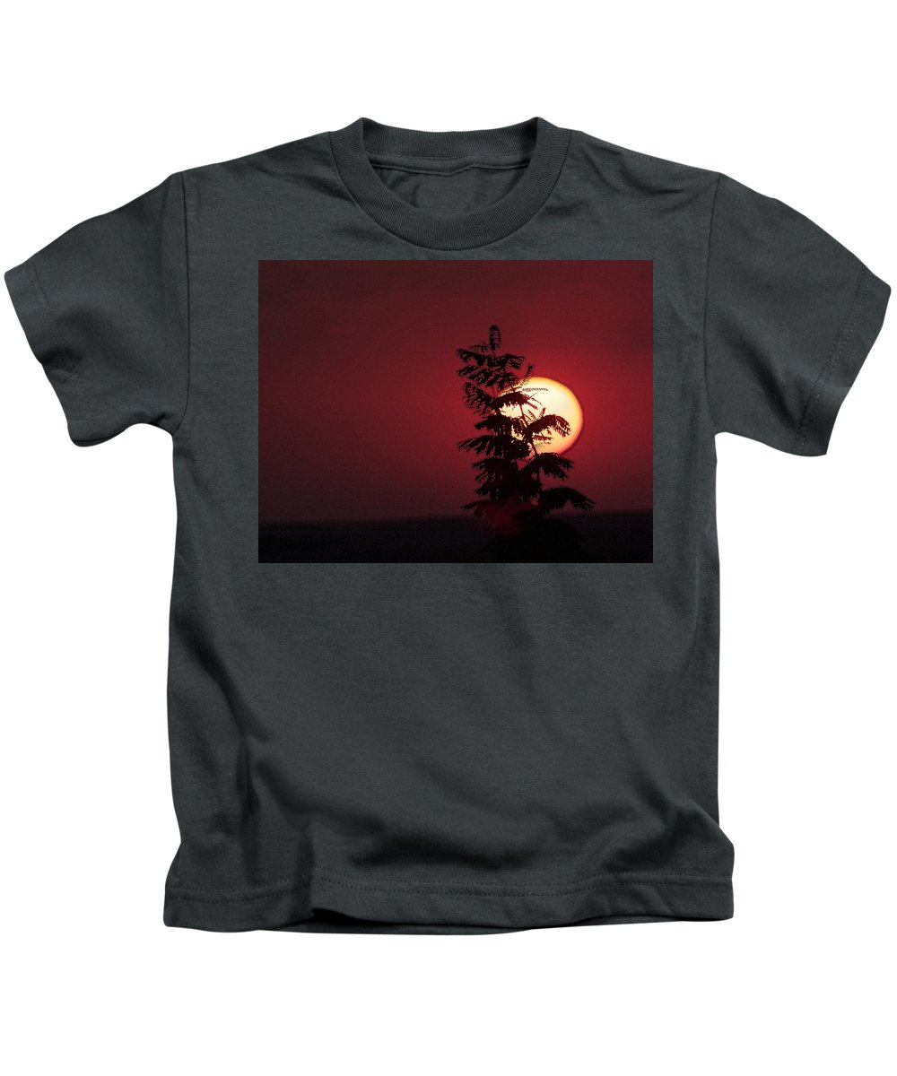 Flower Kids T-Shirt featuring the photograph Sun And The Flower by Cliff Norton