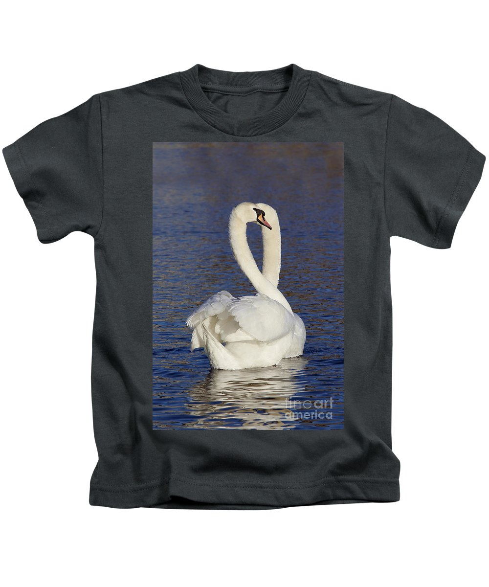 Float Kids T-Shirt featuring the photograph Swans by Michal Boubin