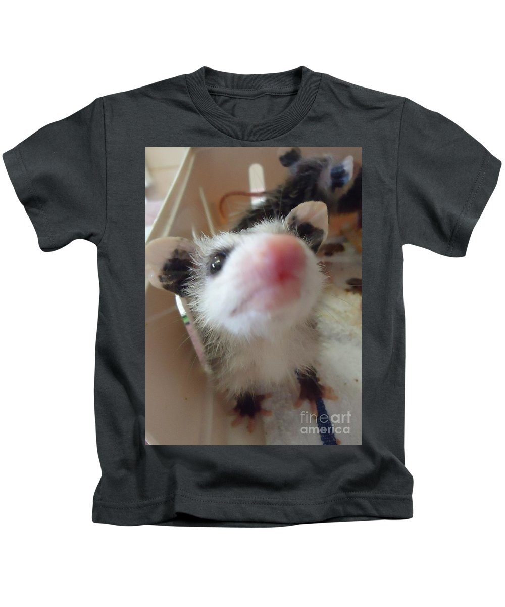 Opossum Kids T-Shirt featuring the photograph Sweetness by Art Dingo