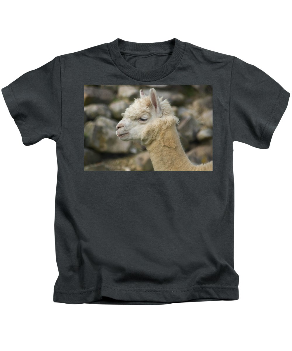 Animal Kids T-Shirt featuring the photograph The Alps by Trish Tritz