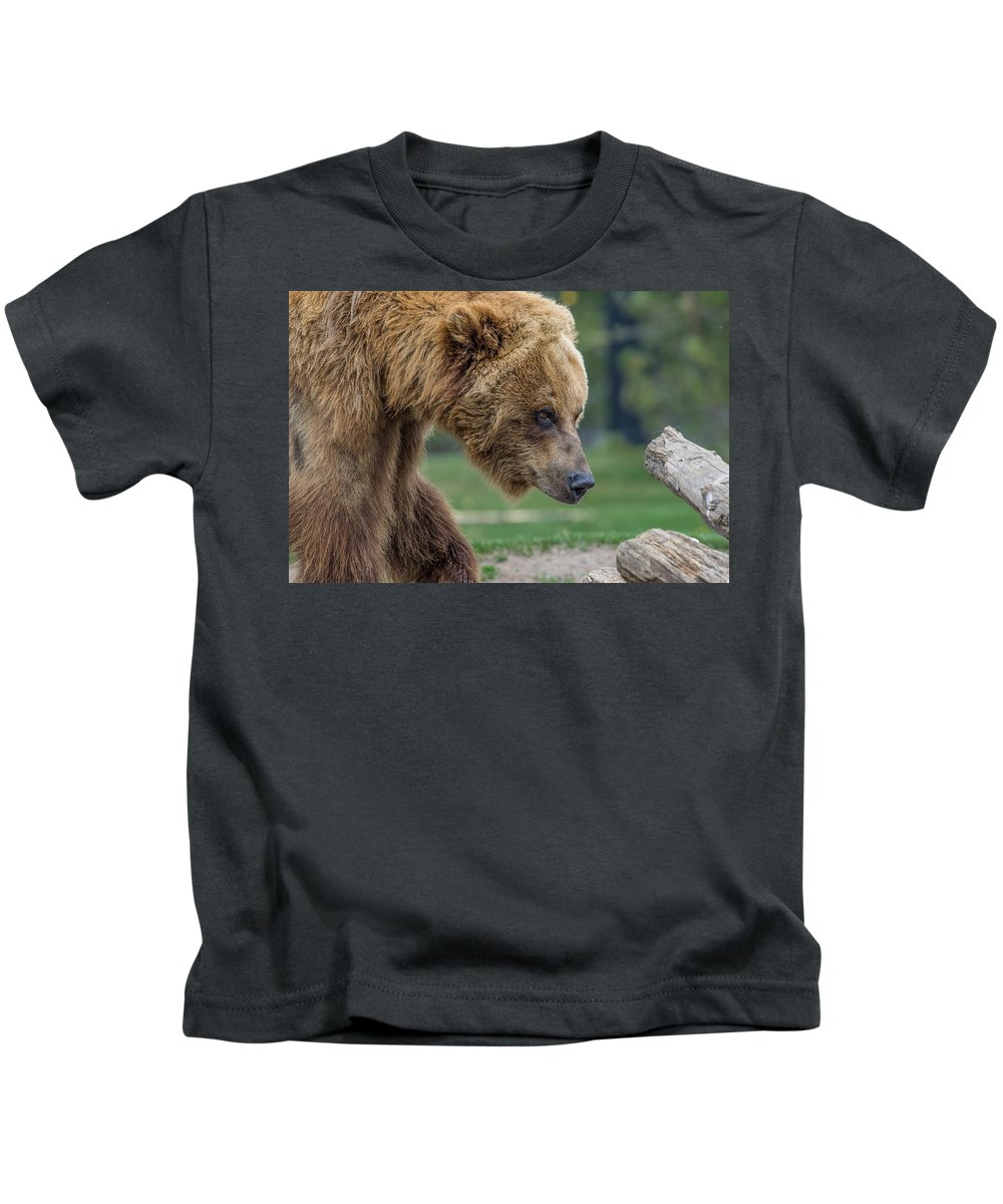 Grizzly Bear Kids T-Shirt featuring the photograph The Grizzly In Spring by Greg Nyquist