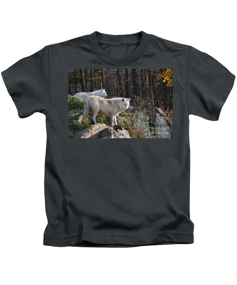 Michael Cummings Kids T-Shirt featuring the photograph The Lookout by Michael Cummings