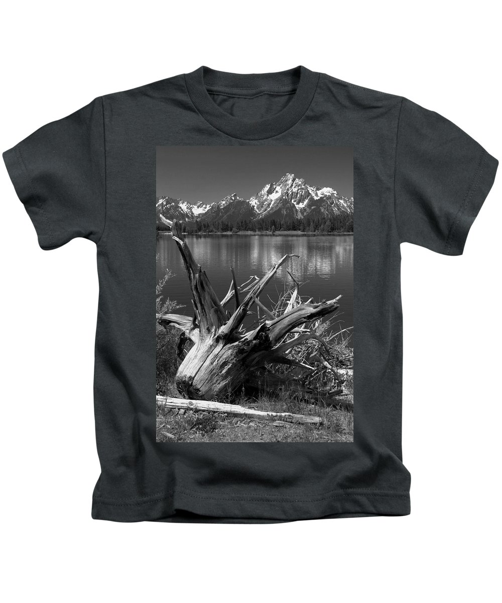 Art Kids T-Shirt featuring the photograph Tree Stump On The Shore Of Lewis Lake At Yellowstone by Randall Nyhof