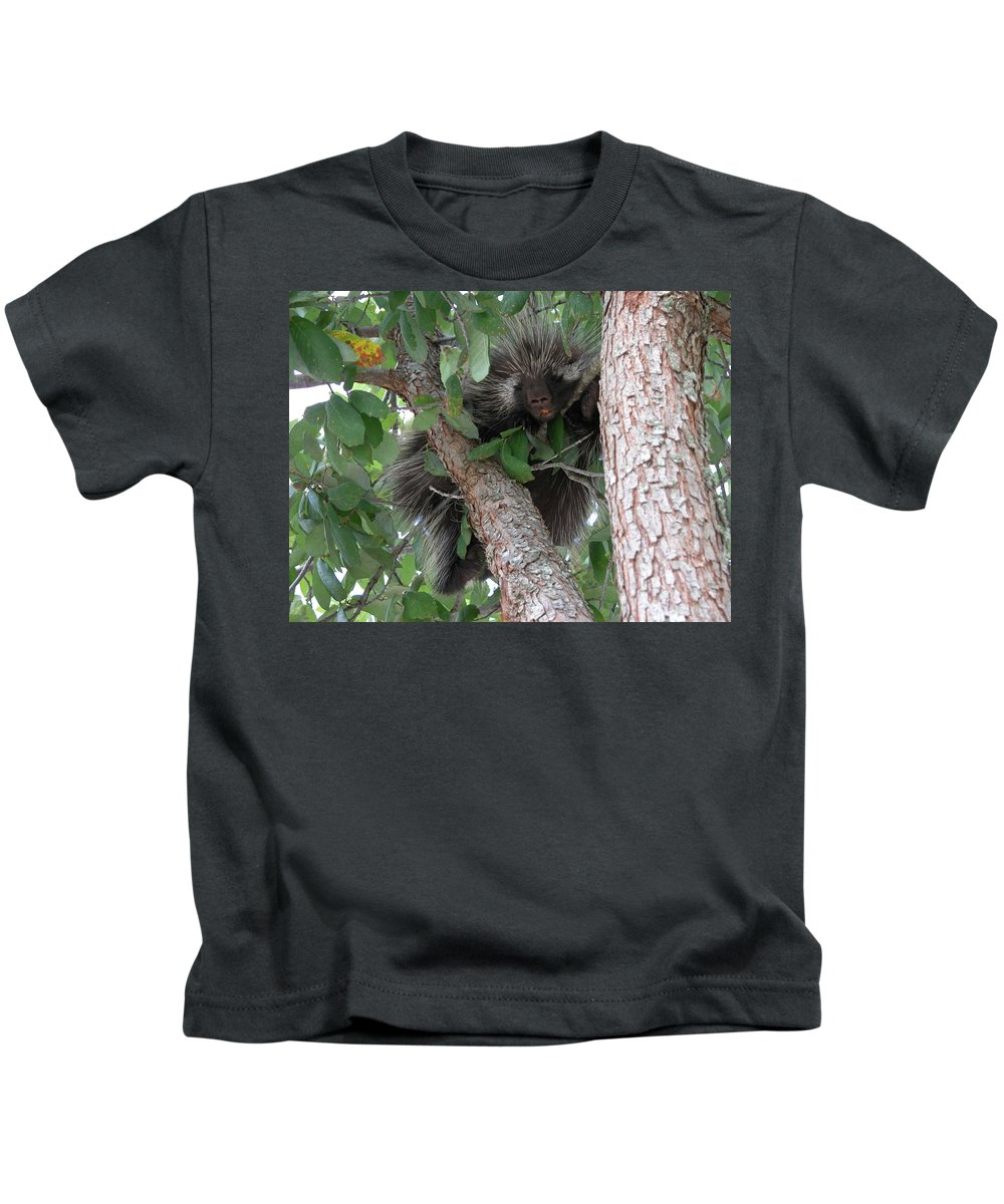 Porcupine Kids T-Shirt featuring the photograph Where's My Toothbrush by Cindy Clements