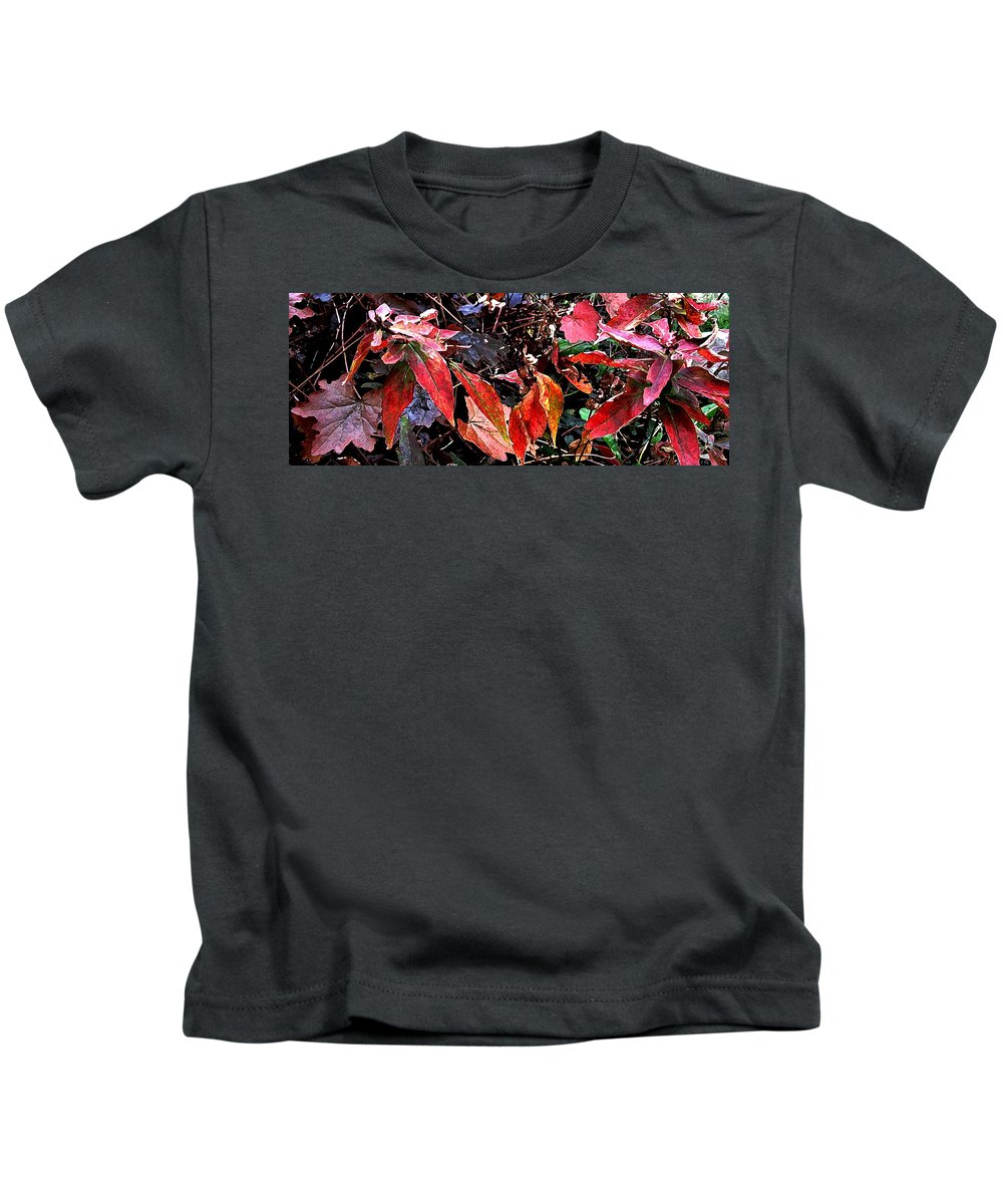 Autumn Kids T-Shirt featuring the photograph Whispers Of Winter by Ian MacDonald