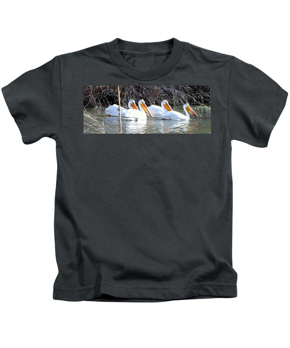 White Pelicans Kids T-Shirt featuring the photograph White Pelicans by Judy Garrett