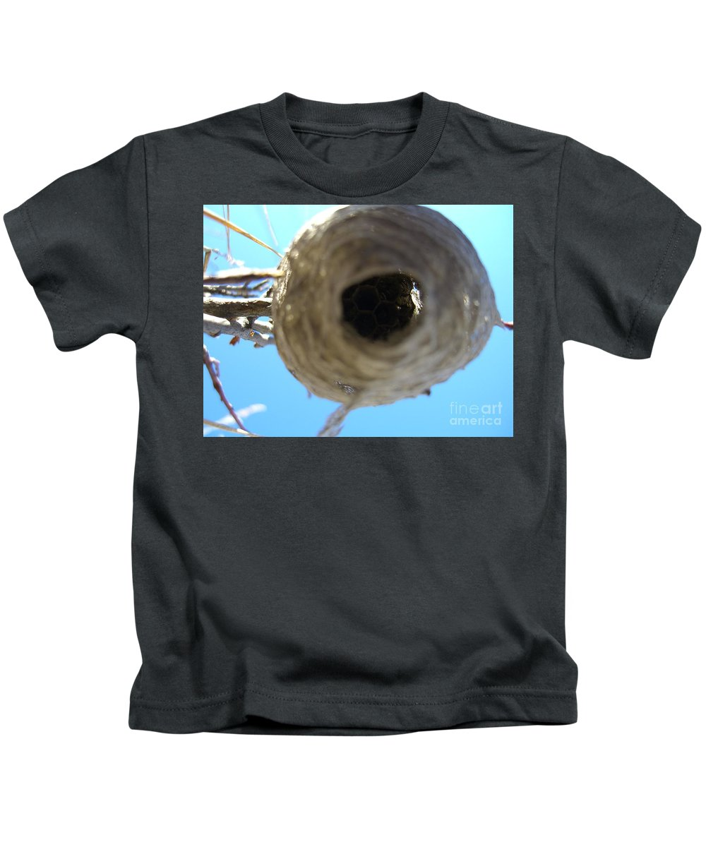 Photograph Bee Hive Blue Sky Branch Insect Kids T-Shirt featuring the photograph Bee Hive by Seon-Jeong Kim