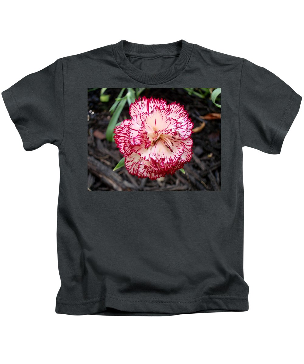 Dianthus Kids T-Shirt featuring the photograph Dainty Dianthus by Michiale Schneider